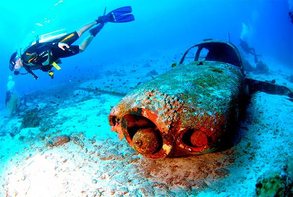 4-diving-sea